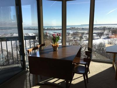 Milwaukee Condo/Townhouse For Sale: 1660 N Prospect Ave #Unit 409