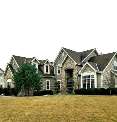 Single Family Home For Sale: 289 Lakeridge Dr