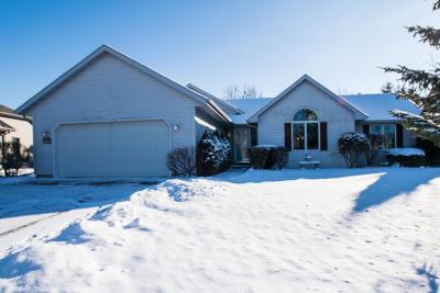 Walworth Single Family Home Active Contingent With Offer: 539 Summer Dr