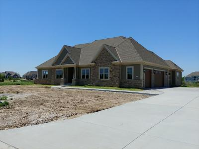 Single Family Home For Sale: 1671 Whistling Hill Cir