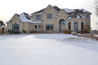 Pewaukee Single Family Home Active Contingent With Offer: N39w23607 Broken Hill Cir N