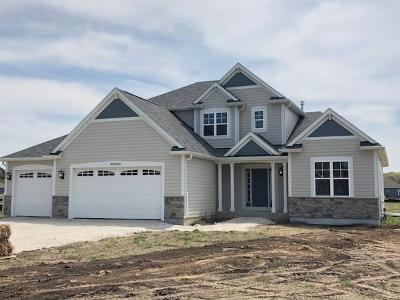 Hartland Single Family Home Active Contingent With Offer: N69w27745 Leslie Ln #Lt32