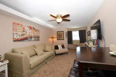 Racine County Condo/Townhouse For Sale: 2501 S Browns Lake Dr #A-5