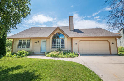 Single Family Home For Sale: 4119 W Fieldview Ct