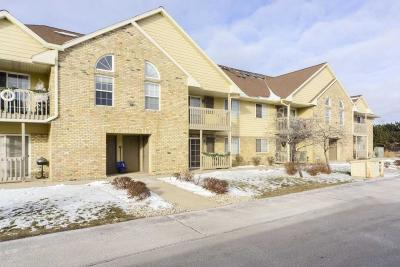 Hartland Condo/Townhouse Active Contingent With Offer: 4821 Easy St #3