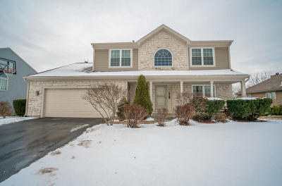 Franklin Single Family Home Active Contingent With Offer: 8715 W Elm Ct
