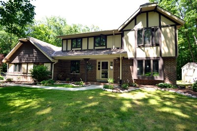 Racine County Single Family Home For Sale: 29400 Manor Dr