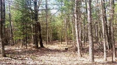 Wausaukee Residential Lots & Land For Sale: Lt50 Menominee Shores Dr
