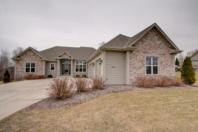 Jackson WI Single Family Home Active Contingent With Offer: $439,900