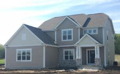 Hartland Single Family Home For Sale: N68w27869 Steepleview Ln