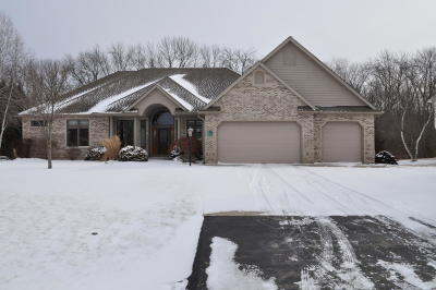 Racine Single Family Home For Sale: 113 8th Ct