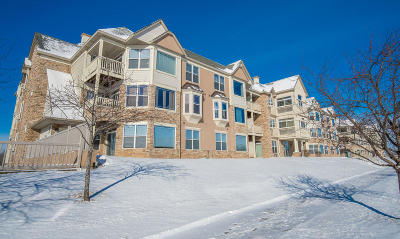 Franklin Condo/Townhouse Active Contingent With Offer: 6995 S Riverwood Blvd #UNIT 110