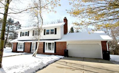 Mukwonago Single Family Home Active Contingent With Offer: W273s8575 Hillview Dr