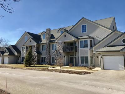 Pewaukee Condo/Townhouse Active Contingent With Offer: N30w23065 Pineview Way #1