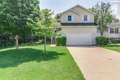Pleasant Prairie Single Family Home Active Contingent With Offer: 971 93rd St
