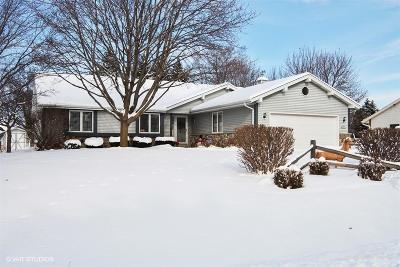 Germantown Single Family Home Active Contingent With Offer: N103w16014 Founders Ln