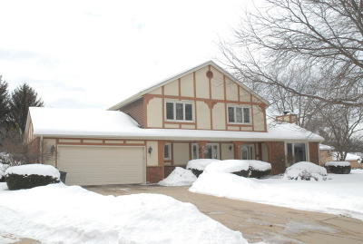 West Allis Single Family Home For Sale: 11255 W Hale Ct