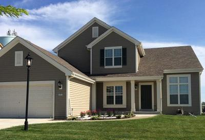 Ozaukee County Single Family Home For Sale: 1761 Aster