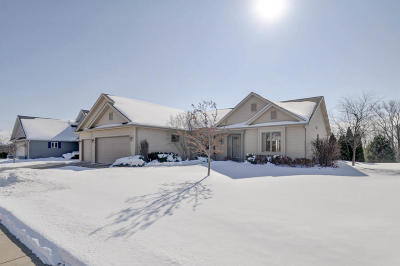 Racine County Single Family Home For Sale: 8409 Majestic Hills Dr