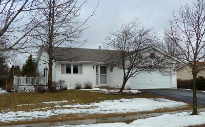 Fort Atkinson WI Single Family Home Active Contingent With Offer: $185,000