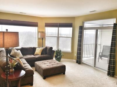 Franklin Condo/Townhouse Active Contingent With Offer: 6955 S Riverwood Blvd #309