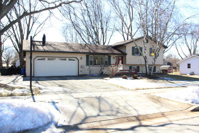 Lake Mills Single Family Home Active Contingent With Offer: 940 Stony Rd
