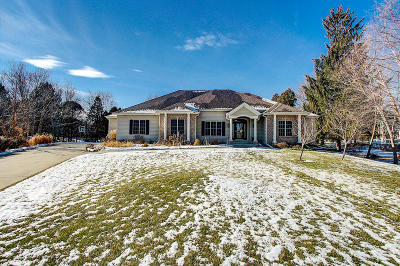 Brookfield Single Family Home Active Contingent With Offer: 17125 Driftwood Ct