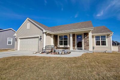 Port Washington Single Family Home For Sale: 230 Foxglove St