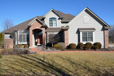 Racine County Single Family Home For Sale: 8732 Arbor Hill Dr