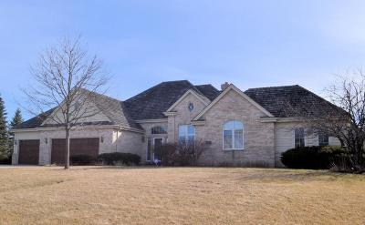 Brookfield Single Family Home For Sale: 19335 Hayden Ct