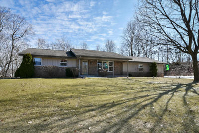 Single Family Home Active Contingent With Offer: 236 Skiview Ct