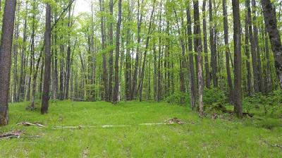 Menominee County, Marinette County Residential Lots & Land For Sale: 0 Limberg Ln