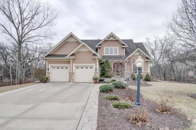 Racine County Single Family Home Active Contingent With Offer: 8901 Shadowood Trl