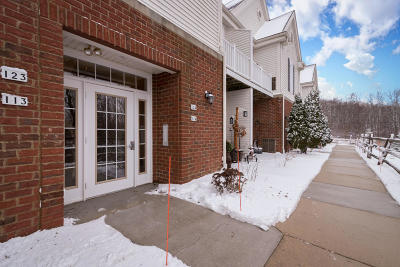 Condo/Townhouse Active Contingent With Offer: 2135 Rainbow Lake Ln #124