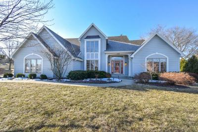 Pewaukee Single Family Home Active Contingent With Offer: 1146 Riverwalk Ct