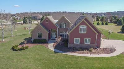 Hartland Single Family Home For Sale: W291n6304 Red Tail Ln