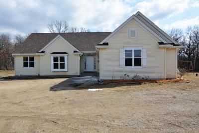 Racine County Single Family Home For Sale: 7241 Walczak Rd
