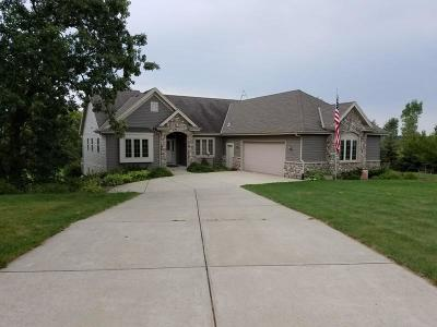 Hartford Single Family Home Active Contingent With Offer: 5575 Fieldcrest Dr
