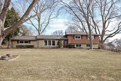 Brookfield Single Family Home For Sale: 1500 Rolling Meadow Dr