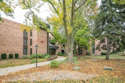 Shorewood Condo/Townhouse For Sale: 1818 E Shorewood Blvd #313