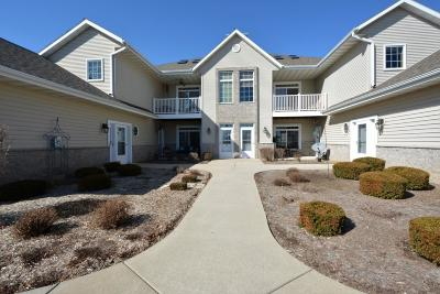 Mukwonago Condo/Townhouse Active Contingent With Offer: 1613 Grey Fox Trl #D