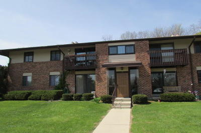 Pewaukee Condo/Townhouse Active Contingent With Offer: 315 Park Hill Drive #E