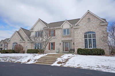 Hartland Single Family Home Active Contingent With Offer: W311n4956 Old Steeple Ct