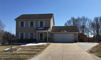 Waterloo Single Family Home For Sale: 278 Goehl Rd