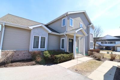 New Berlin Condo/Townhouse For Sale: 4669 S Forest Point Blvd