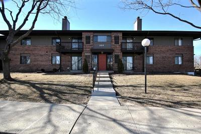 Pewaukee Condo/Townhouse Active Contingent With Offer: 354 Park Hill Dr #G