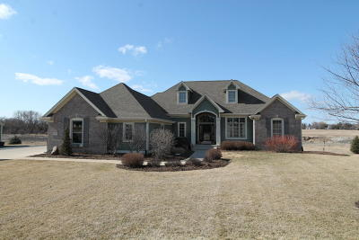 Racine County Single Family Home For Sale: 26550 Eagle View Dr