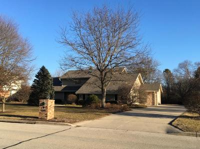 Milwaukee County Single Family Home For Sale: 6325 Parkview Rd