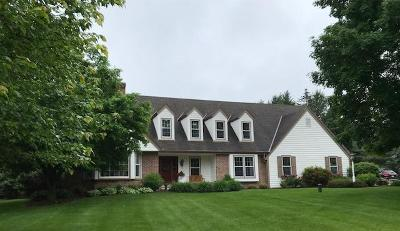 Delafield Single Family Home For Sale: 1086 Willow Dr