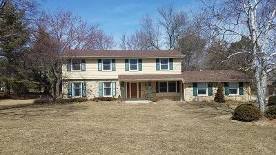 Brookfield Single Family Home For Sale: 18770 Le Chateau Dr